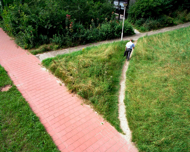 Man Taking Shortcut Path